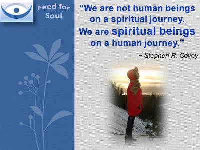 Feed for Soul quotes at Feed4Soul: Self-Discovery - We are not human beings on a spiritual journey. We are spiritual beings on a human journey - Ctephen Covey